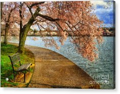Meet Me At Our Bench Acrylic Print by Lois Bryan