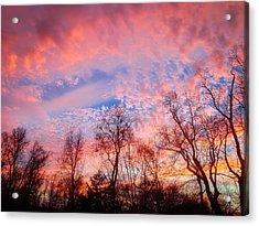 Memphis Winter Sunset Acrylic Print by Jon Woodhams