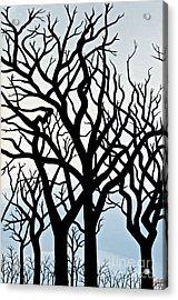 Mesa Verde Acrylic Print by Christine Belt