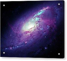 Messier 106 Acrylic Print by Detlev Van Ravenswaay