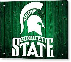 Michigan State Barn Door Acrylic Print by Dan Sproul