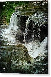 Middle Johnson Falls Acrylic Print by Lianne Schneider