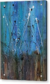 Starry Nights Acrylic Print by Lauren Petit