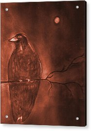 Midnight Solitude Acrylic Print by Noreen  Withrow Roux