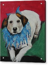 Mikey Acrylic Print by Jeanne Fischer