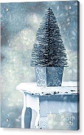Miniature Christmas Tree Acrylic Print by Amanda And Christopher Elwell