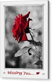 Missing You... Acrylic Print by Kaye Menner