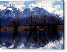 Mission Mountains Montana Acrylic Print by Thomas R Fletcher