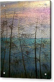 Mist Fantasy Acrylic Print by Rick Silas