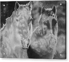 Mist Acrylic Print by Glen Powell