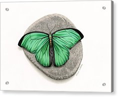 Mito Awareness Butterfly- A Symbol Of Hope Acrylic Print by Sarah Batalka