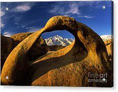 Mobius Arch Acrylic Print by Inge Johnsson