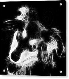 Moja - Black And White Acrylic Print by Marlene Watson