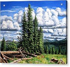 Molas Pass Area Acrylic Print by Timithy L Gordon