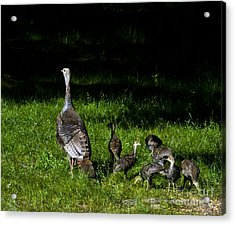 Mom..he Is Looking At Us Again Acrylic Print by Timothy J Berndt
