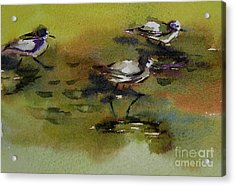 Monday Evening Sandpipers  Acrylic Print by Julianne Felton