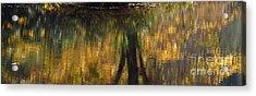 Monet At The Biltmore Acrylic Print by Anita Adams