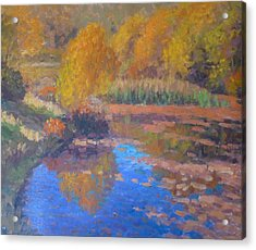 Monets Pond. Whitechapple Acrylic Print by Terry Perham