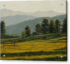 Montana Morning Acrylic Print by Crista Forest