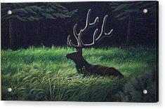 Montana Morning Acrylic Print by Dan Parsons