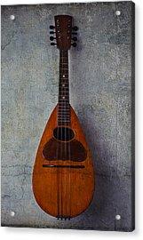 Moody Mandolin Acrylic Print by Garry Gay