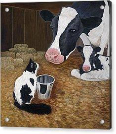 Mooeow Acrylic Print by Karen Zuk Rosenblatt