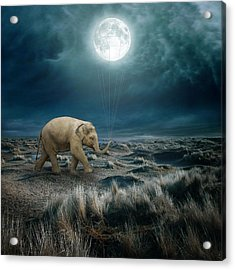 Moon Acrylic Print by Beata Bieniak