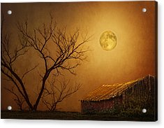 Moonglow Over Polenz Ranch Acrylic Print by Nikolyn McDonald