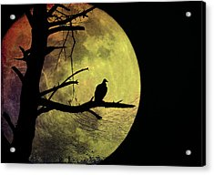 Moonlight Mile Acrylic Print by Bill Cannon