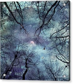 Moonlight Acrylic Print by Stelios Kleanthous