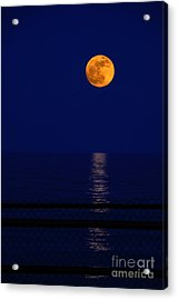 Moonrise Over Water Acrylic Print by Charline Xia