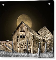 Moonshine Acrylic Print by Stellina Giannitsi