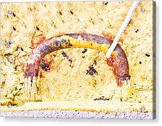 Mooring Handle Acrylic Print by Tom Gowanlock