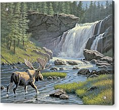 Moose Falls Acrylic Print by Paul Krapf