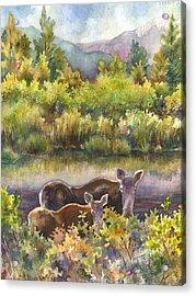 Moose Magic Acrylic Print by Anne Gifford