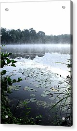 Morning At Lake Acrylic Print by Willo Breisacher