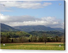 Morning In Cades Cove Acrylic Print by Roger Potts