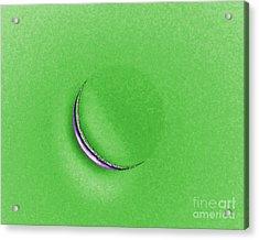 Morning Moon Green Acrylic Print by Al Powell Photography USA