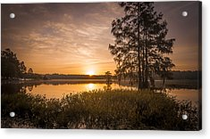 Morning Pull Acrylic Print by Steve DuPree