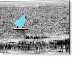 Morning Sail Acrylic Print by James Brunker