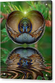 Morning Shell Acrylic Print by WB Johnston