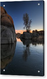 Morning Wood Acrylic Print by Sean Foster