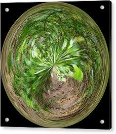 Morphed Art Globe 3 Acrylic Print by Rhonda Barrett
