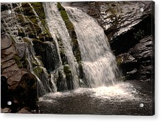 Mossy Drop Acrylic Print by Greg and Chrystal Mimbs
