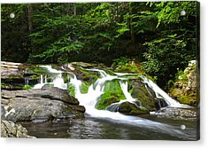 Mossy Mountain Falls Acrylic Print by Frozen in Time Fine Art Photography