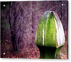 Mossy Post Acrylic Print by Greg Simmons