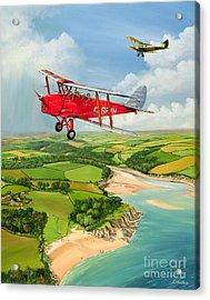 Mothecombe Moths Acrylic Print by Richard Wheatland