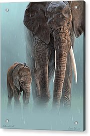 Mother And Child Acrylic Print by Aaron Blaise