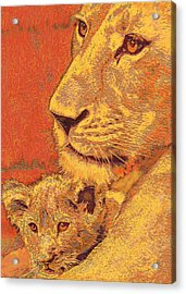 Mother And Cub Acrylic Print by Jane Schnetlage