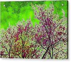 Mount Fuji In Bloom Acrylic Print by Pepita Selles
